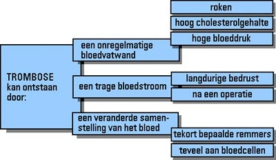 Tromboseschema