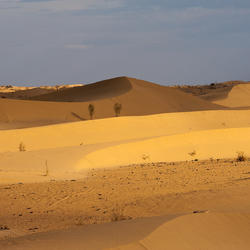 Каракум пустыня