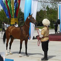 Ashgabat - National Hippodrome on National Racehorse Day
